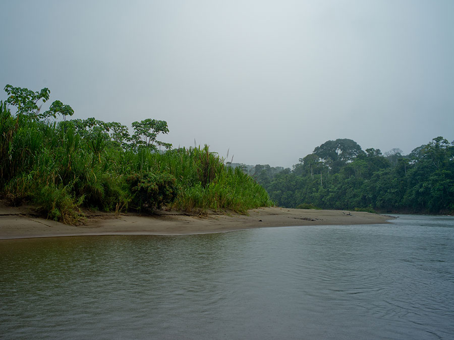 Arajuno river