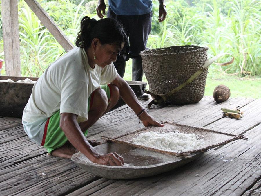 Amazon culture