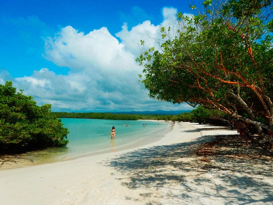 Baltra beach