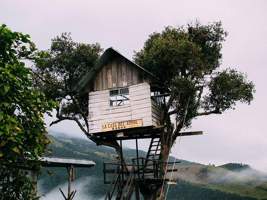 Casa del árbol Baños